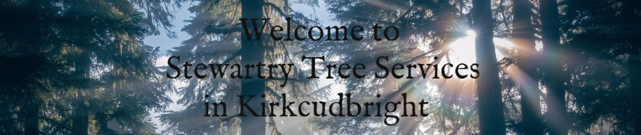 Welcome to Stewartry Tree services in Kirkcudbright